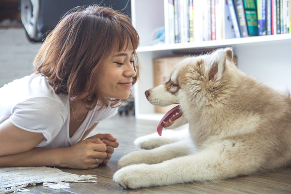 Pet Food Packaging Features Owners Love